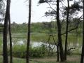 2019-05-08Oisterwijk013
