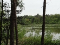 2019-05-08Oisterwijk014